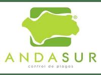 Andasur